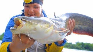 РЫБАКИ НАГЛО ОКРУЖАЮТ но КЛЁВ ТОЛЬКО У МЕНЯ Рыбалка на спиннинг Сом на воблер
