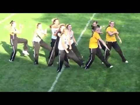 Knoxville High School JV Dance Team:  Homecoming 2016