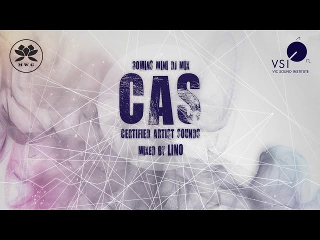 LINO [VSI] C.A.S (Certified Artist Sounds) in MWG [30mins Mini DJ Mix]