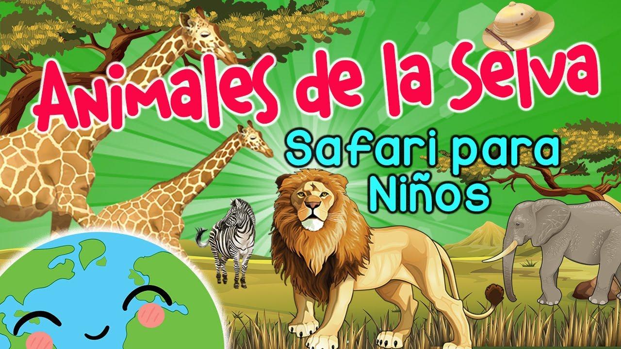 Animales De La Selva En Español Safari Para Niños Animales Animados Youtube