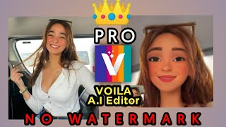 Voila A.I Artist Pro - Photo to Cartoon Face Art Editor screenshot 5