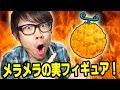 超リアル!メラメラの実フィギュアキター!フィギュア紹介!ONE PIECE