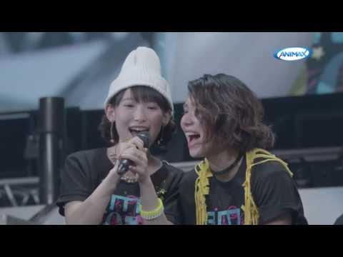 Animax Musix 2016 Yokohama and Animax Musix 2017 Osaka