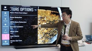 LG C9 OLED TV: 2019 Upgrades (HDMI 2.1, Game Mode Calibration) vs 2018 C8
