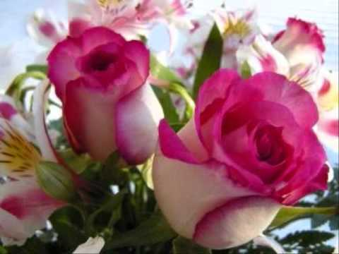 El Cielo Esta Llorando Flores Musica Romantica Mexicana Cancion