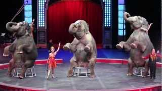 Ringling Bros. and Barnum & Bailey Circus - Savannah