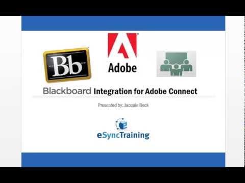 Blackboard + Adobe Connect 9: Basic Integration