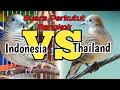 Suara Perkutut Bangkok Thailand Dan Indonesia Koq Beda  Mp3 - Mp4 Download