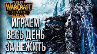 НЕЖИТЬ ВЫШЛА: Тестируем и Оцениваем Бету Warcraft 3 Reforged