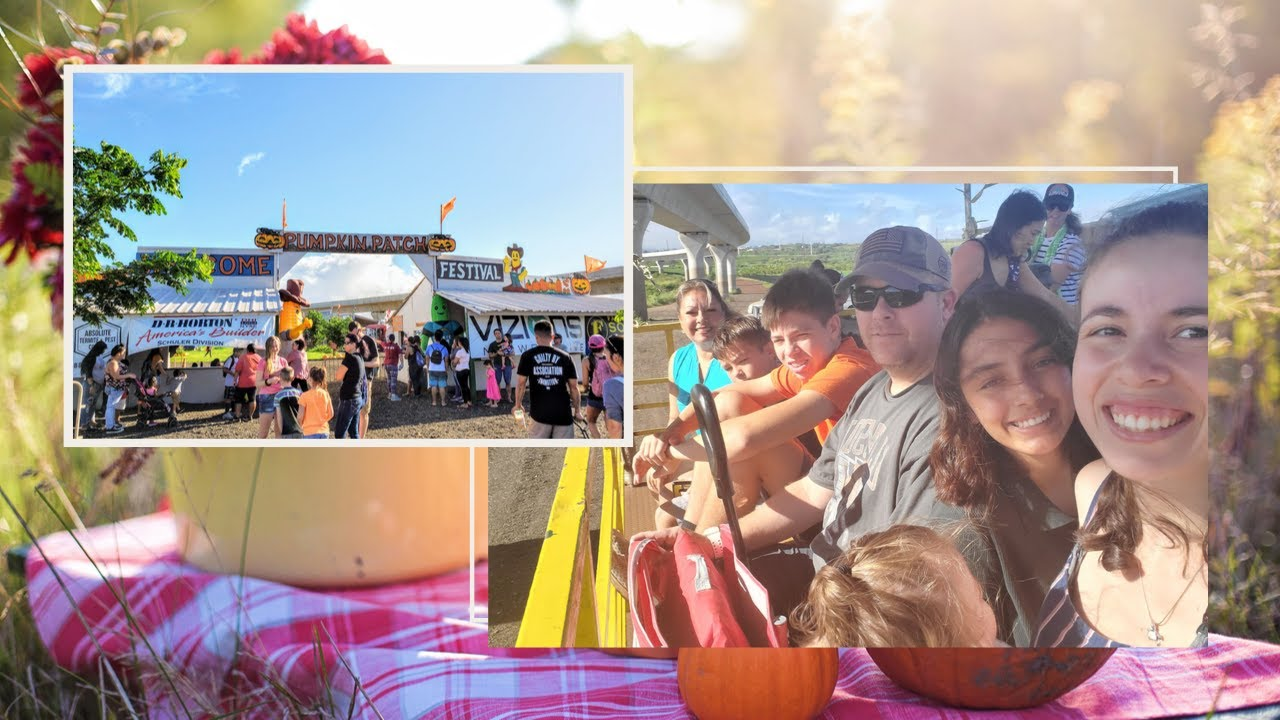 Aloun Farms Pumpkin Festival | Oahu, Hawaii