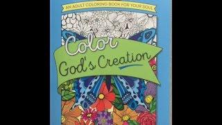 Color God