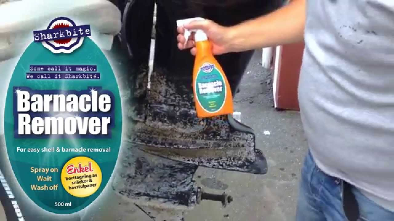 Sharkbite® Barnacle Remover - YouTube 38bac17023925