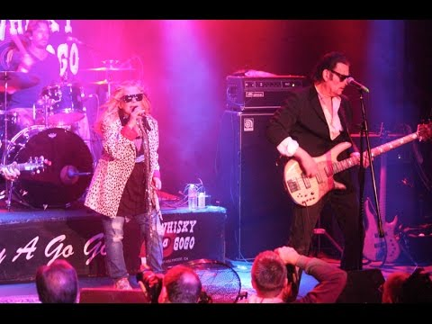 Missing Persons - Words - Live at the Whisky a go go - YouTube