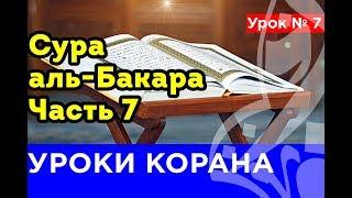 7. КОРАН-ОНЛАЙН. Сура аль-Бакара. Часть 7
