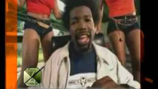 Afroman - Because i got high (Zelis club mix 2011)