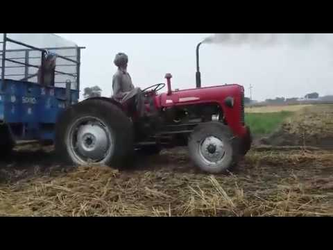 angry old man  pullover old massey tractor