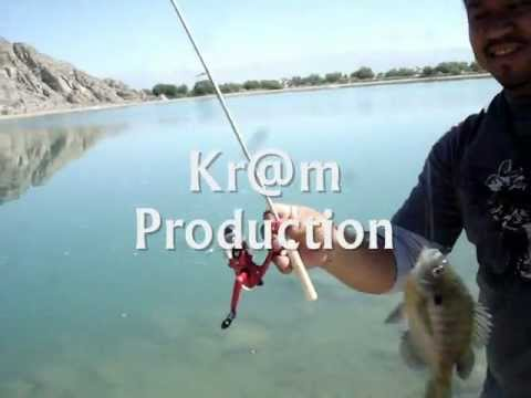 Telescoping Marshmallow Stick Fishing Rod