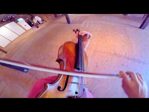 Sean Lee - Paganini Caprice 22 POV