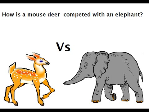 Contoh Narrative Text - Mouse Deer And Elephant