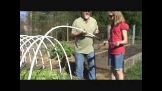 How to Build an Urban Hoop Garden