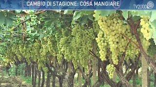 Le straordinarie proprietà dell'uva da tavola