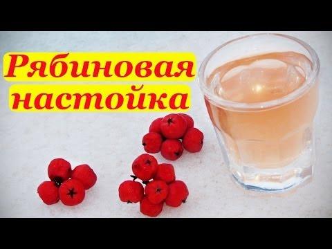 Настойка из красной рябины на самогоне в домашних условиях рецепты