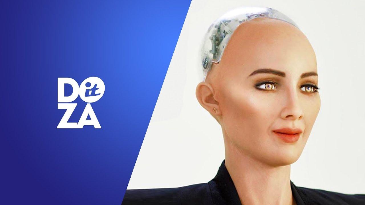 activitatea video a robotului de tranzacționare