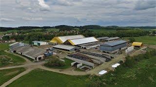 Den v živočišné výrobě - AGROSPOL, Malý Bor a.s.  od telete po výrobu mléka 