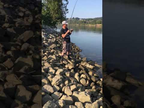 Monster Catfish Caught On 10lb Test Line Clarksville Tn
