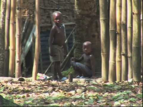 Children on the Front Line: Sierra Leone