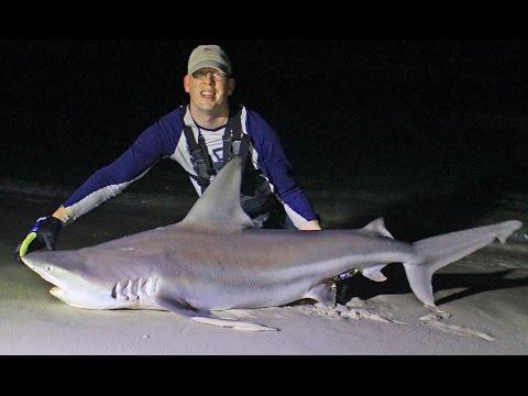Shark Fishing From Beach In Panama City, Florida - Surf Fishing For Sharks