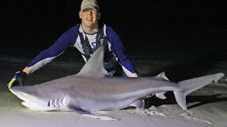 Shark fishing from beach in Panama City, Florida - Surf fishing for sharks(Shark fishing from the beach in Panama City Beach, Florida. Surf fishing for spinner sharks and sandbar sharks is awesome fun! This video explains how to ..., 2016-01-06T22:30:44.000Z)