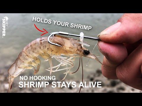 GENIUS OR GARBAGE? Specialty Live Shrimp Holder Hooks!
