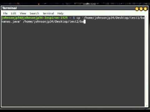 Copy Move Delete Files in Linux Terminal mv cp rm