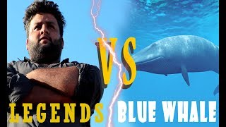 BLUE WHALE GAME - 2017 (Funny Compilation)