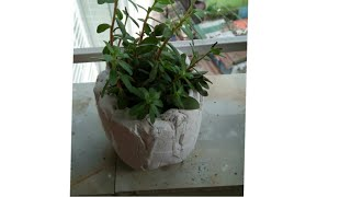 How to make cement pot