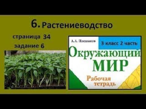 Продукты растениеводства/Растениеводство №6 (Окр.мир 3 класс)