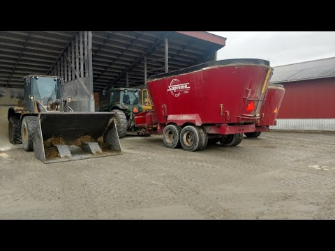 Mixing feed and Feeding TMR to Dairy cows and heifers