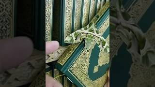 فراشه واقفه على القرآن الكريم ونفس اللون سبحان الله