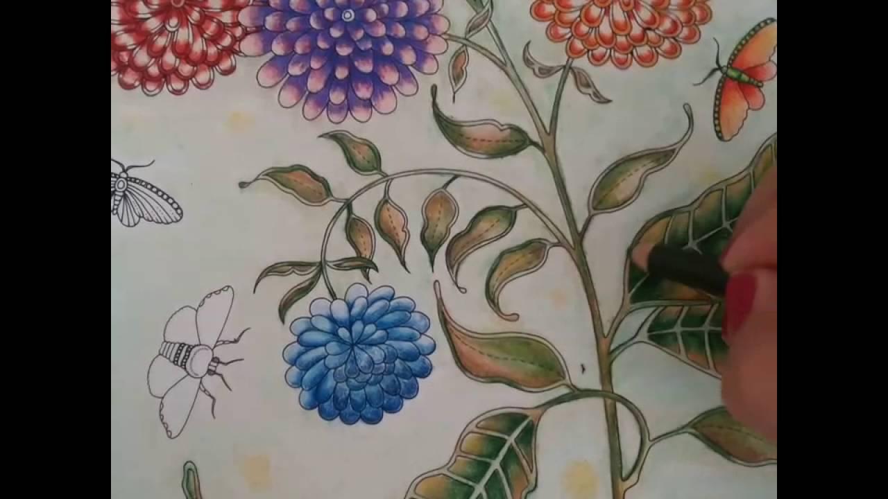 Coloring Book Secret Garden Artist Edition