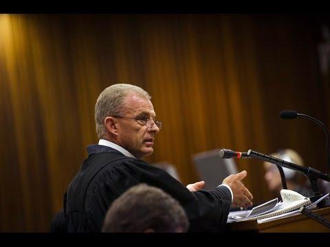 Oscar Pistorius Trial Summary Day 25