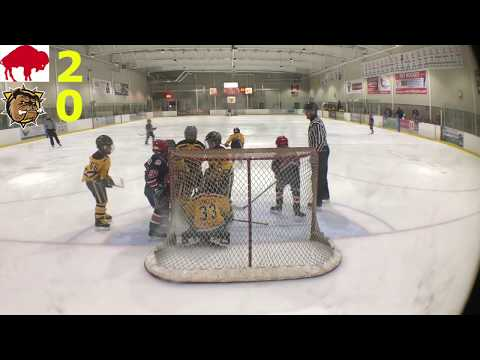 Kids Hockey - Amazing Comeback Buffalo Regals v Hamilton Bulldogs Triple A SCTA NOVICE