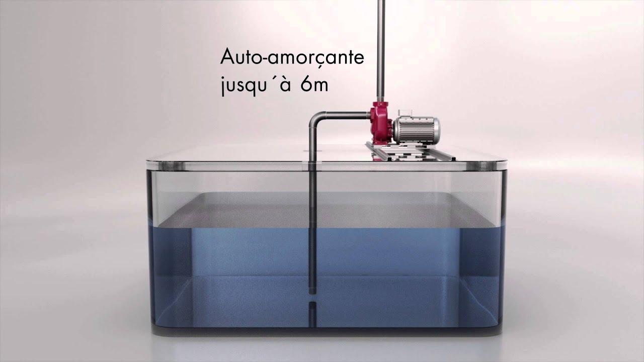 66 Auto Sales >> Pompes centrifuges auto-amorçantes animation - YouTube