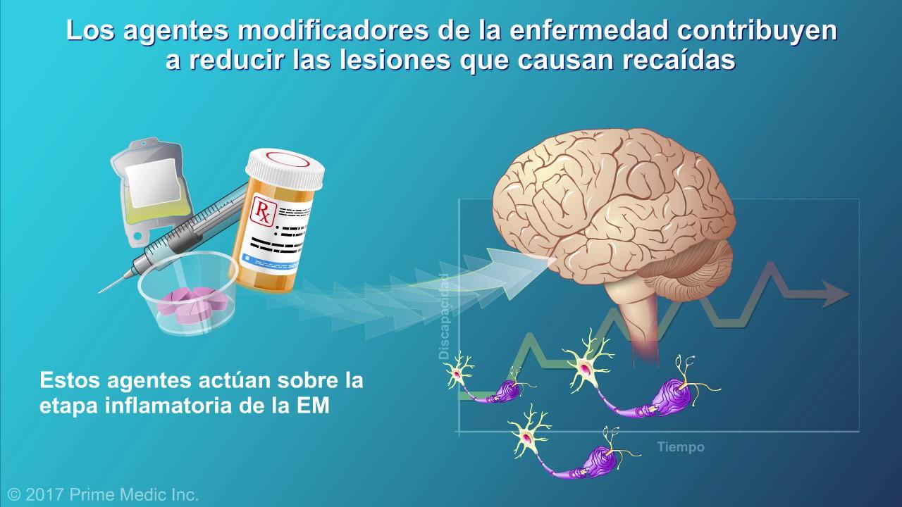 Resultado de imagen de terapias modificadoras de la enfermedad en EM