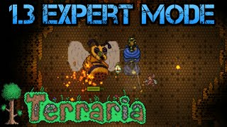 [20] Terraria 1.3 Expert Mode | Fighting The Queen Bee (Let