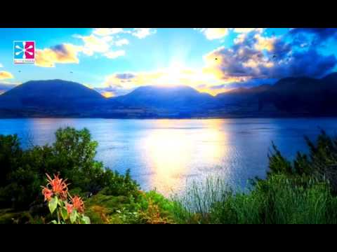 1 Hour Yoga Music: Yoga Nidra, Sound Therapy, Sleep Music, Peaceful Sleep, Delta Wave
