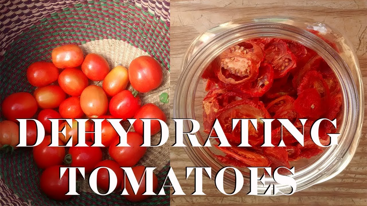 Dehydrating Tomatoes Food Storage You