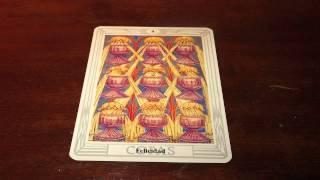 Felicidad,9 de copas (Curso de Tarot) thumbnail
