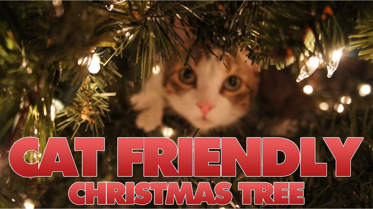 diy cat friendly christmas tree