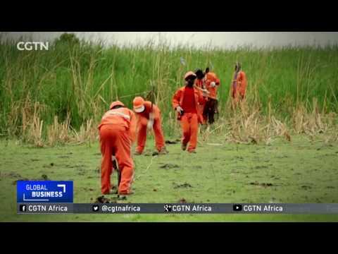 Uganda:Construction on crude oil export pipeline begins
